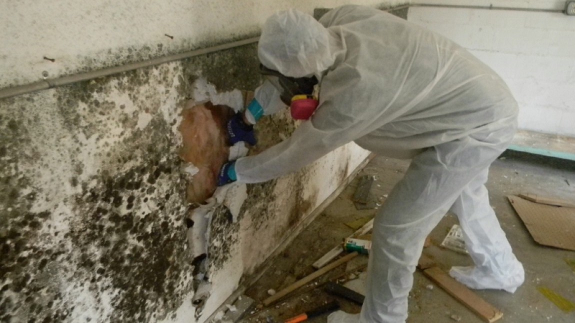 Interior Demolition of a Mold Infested Home